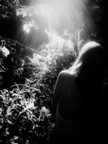 Illuminated by Trey Worsham