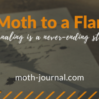 Why a Moth to a Flame?