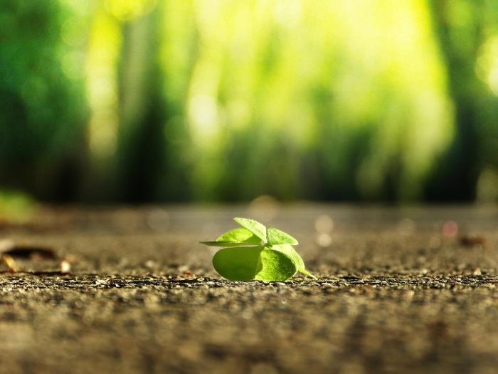 Give Hope aChance